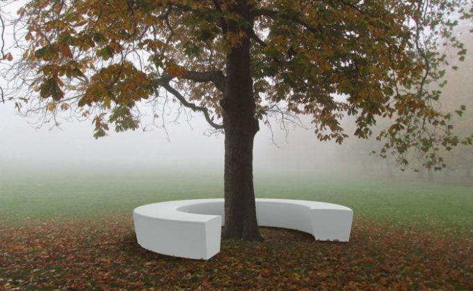 ławka wokół drzewa wall